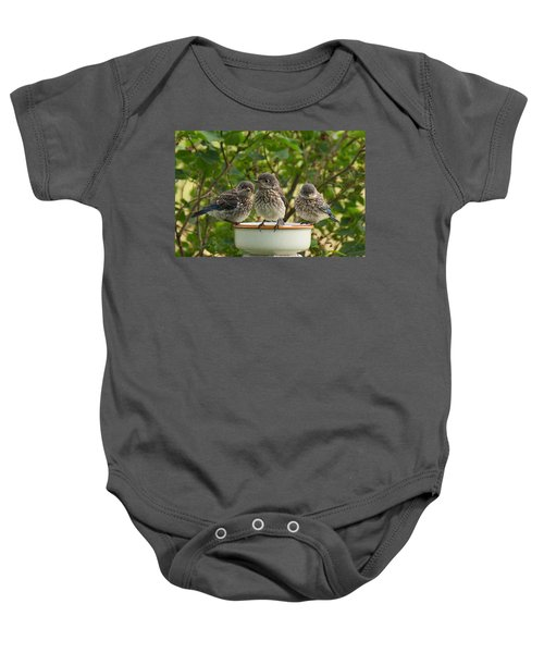 Trouble Times Three Baby Onesie by Bill Pevlor