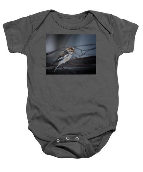 Visiter From The North Country Baby Onesie