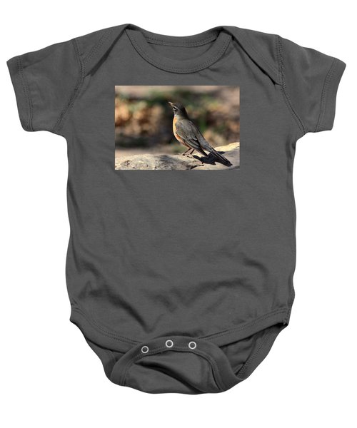American Robin On Rock Baby Onesie