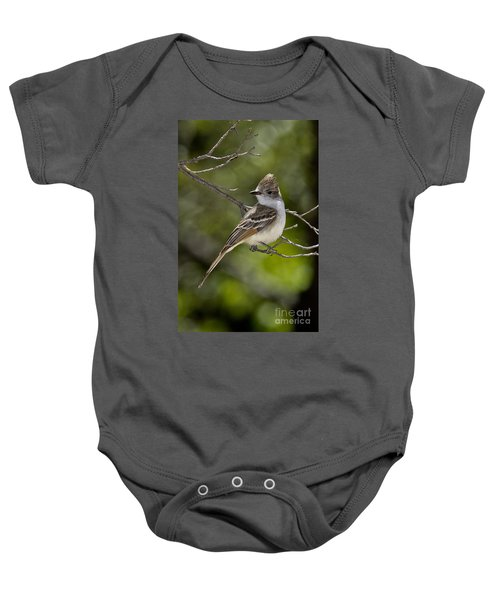 Ash-throated Flycatcher Baby Onesie by Anthony Mercieca