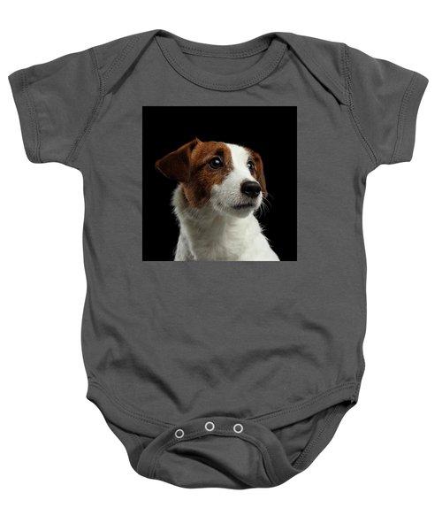 Closeup Portrait Of Jack Russell Terrier Dog On Black Baby Onesie