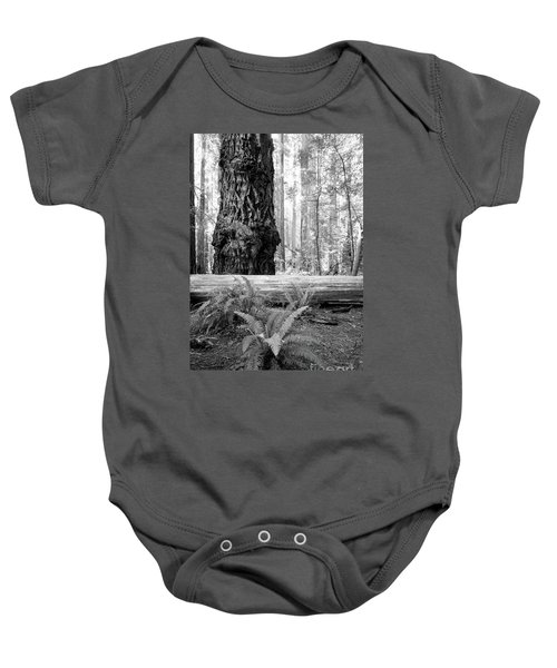 Coastal Redwoods  Baby Onesie