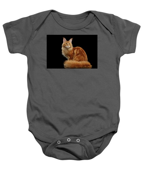 Ginger Maine Coon Cat Isolated On Black Background Baby Onesie
