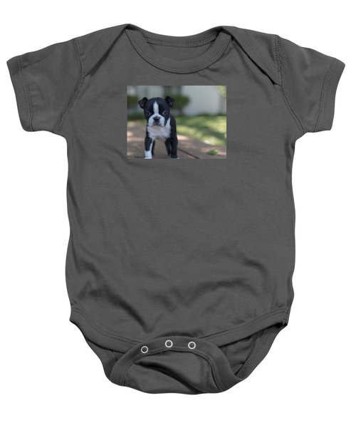 Baby Onesie featuring the photograph Harley As A Puppy by Lora Lee Chapman
