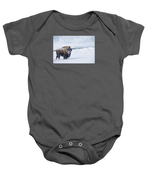 Lone Bison Baby Onesie by Gary Lengyel
