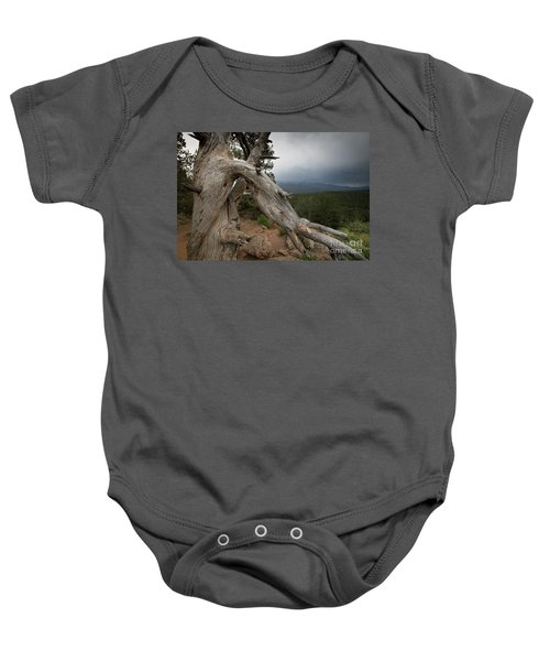 Old Tree On The Mountain Baby Onesie