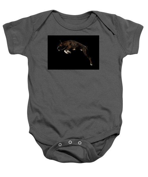 Purebred Boxer Dog Isolated On Black Background Baby Onesie