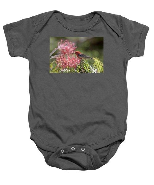 Scarlet Honeyeater Baby Onesie