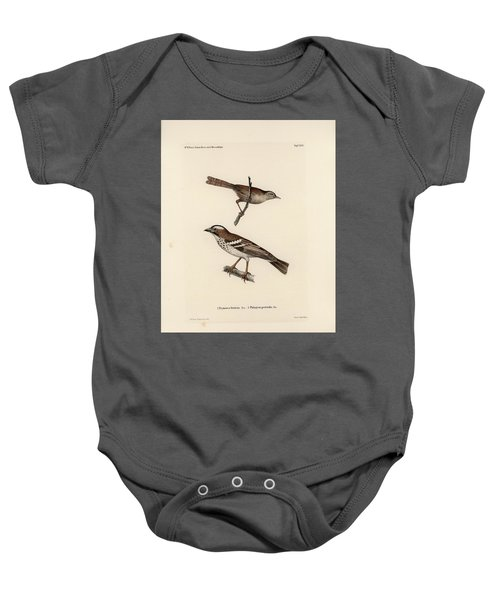 White-browed Sparrow-weaver And Grass Or Bush Warbler Baby Onesie