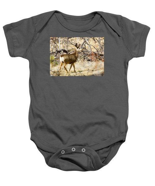 Mule Deer In The Pike National Forest Baby Onesie