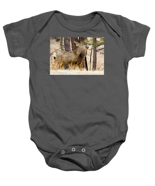 Mule Deer In The Pike National Forest Of Colorado Baby Onesie