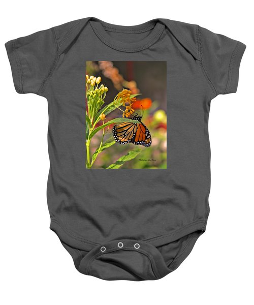 Clinging Butterfly Baby Onesie