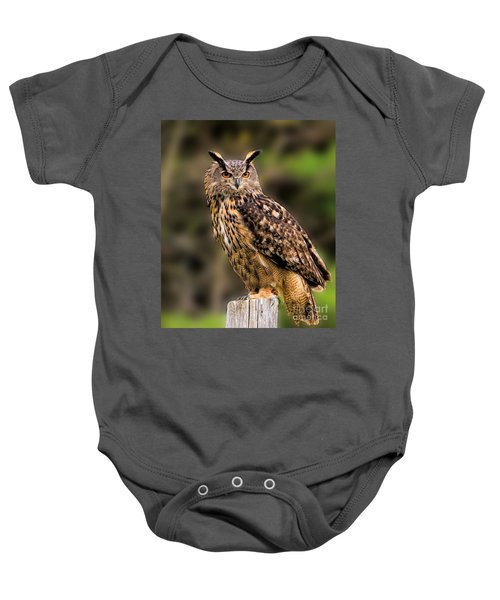 Eurasian Eagle Owl Perched On A Post Baby Onesie