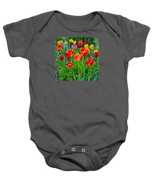 2015 Acewood Tulips 6 Baby Onesie