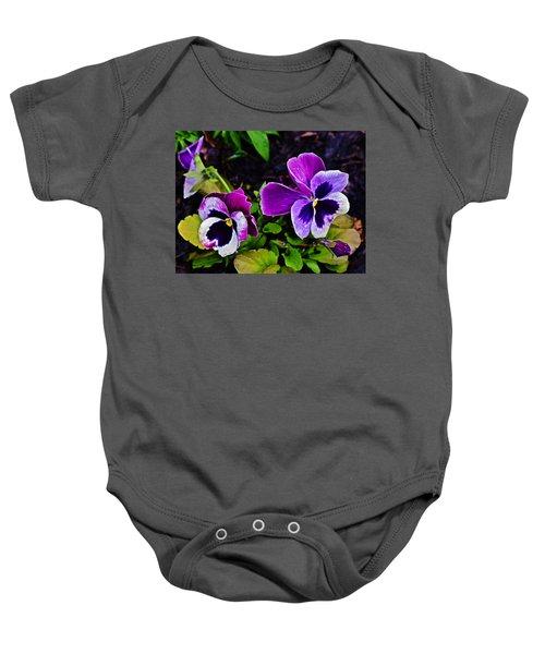 2015 Spring At Olbrich Gardens Violet Pansies Baby Onesie