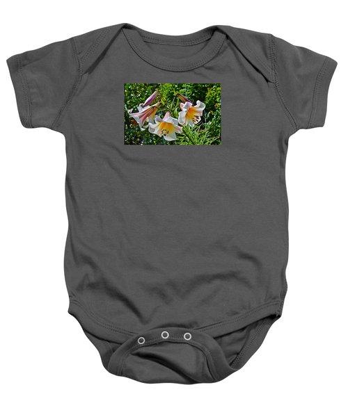 2015 Summer At The Garden Lilies In The Rose Garden 1 Baby Onesie