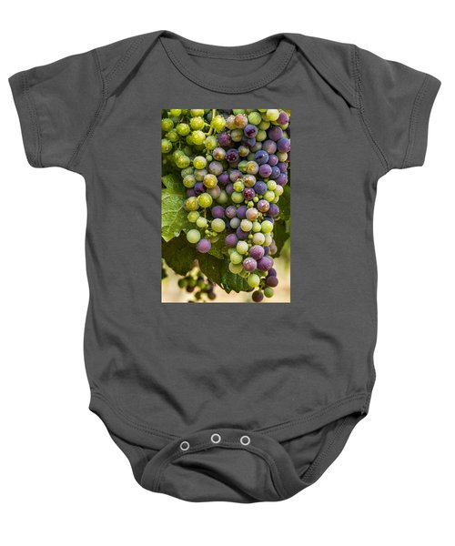 Red Wine Grapes Hanging On The Vine Baby Onesie