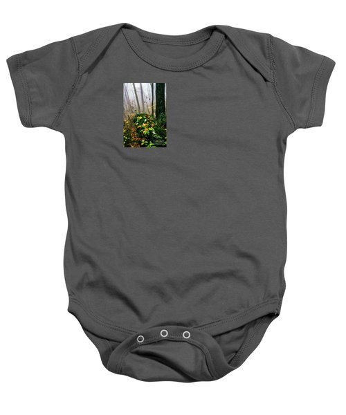 Autumn Monongahela National Forest Baby Onesie