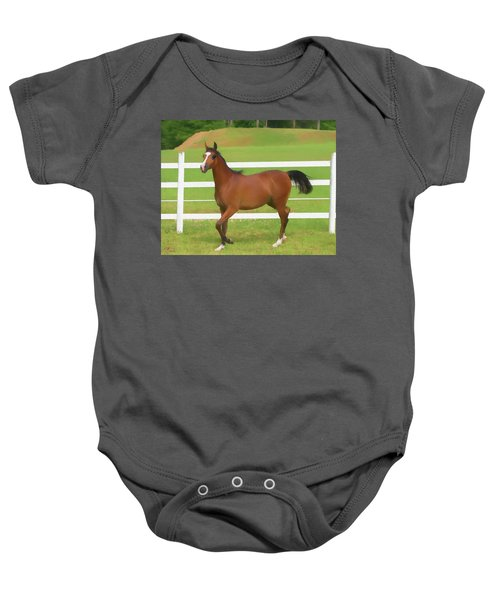 A Beautiful Arabian Filly In The Pasture. Baby Onesie