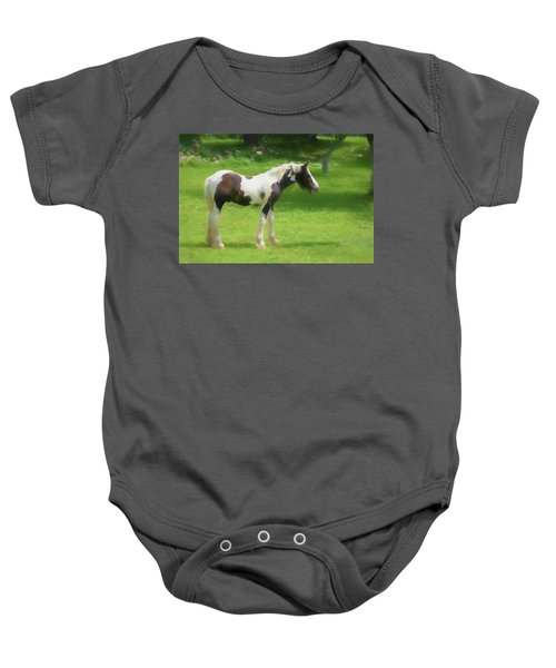 A Beautiful Young Gypsy Vanner Standing In The Pasture Baby Onesie