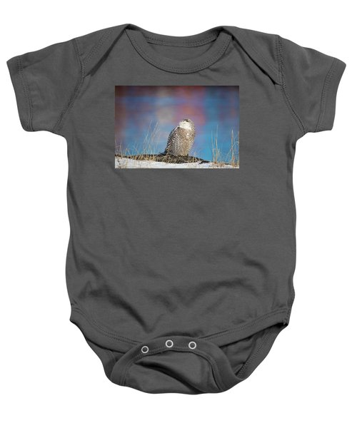 A Colorful Snowy Owl Baby Onesie