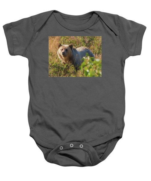 A  Female Grizzly Bear Looking Alertly At The Camera. Baby Onesie