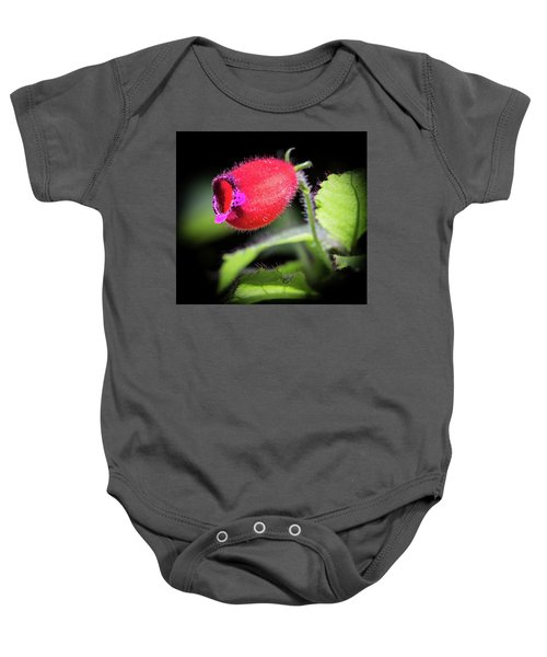 A Gesneriad Baby Onesie