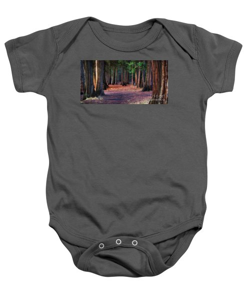 A Path Of Redwoods Baby Onesie