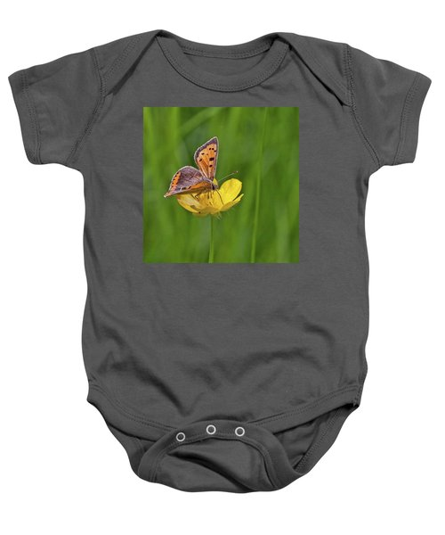 A Small Copper Butterfly (lycaena Baby Onesie
