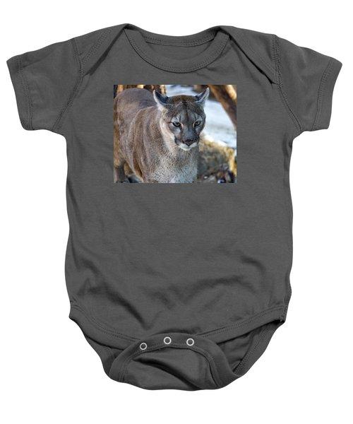 A Stunning Mountain Lion Baby Onesie