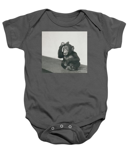 A Young Chimpanzee Playing With A Brush Baby Onesie