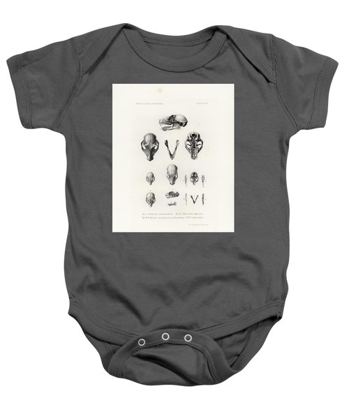 African Mammal Skulls Baby Onesie