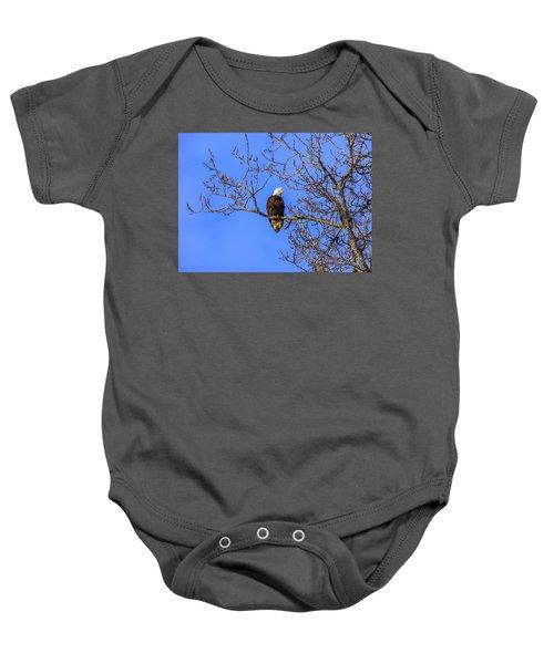 Alaskan Bald Eagle In Tree At Sunset Baby Onesie