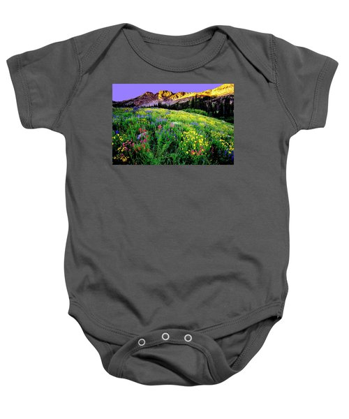 Albion Meadows Baby Onesie