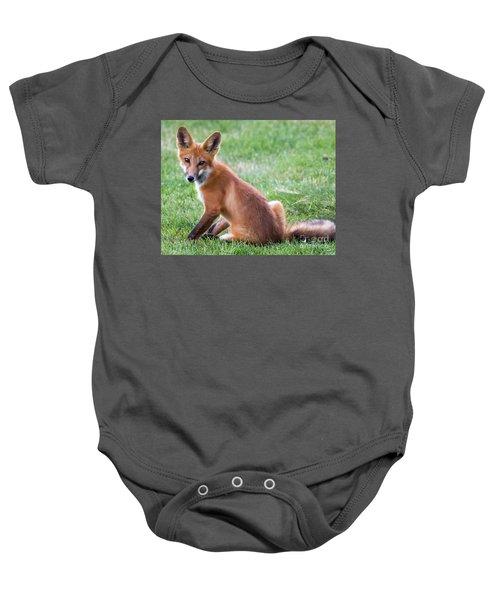 American Red Fox  Baby Onesie