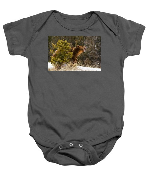 Angry Grizzly Behind Tree Baby Onesie