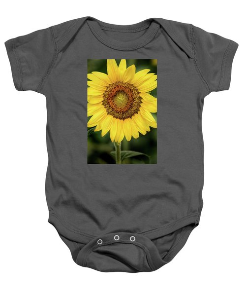 Another Stunning Flower Baby Onesie