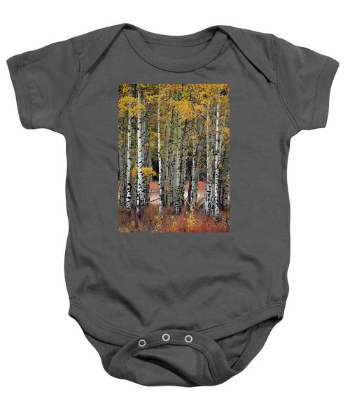 Appreciation Baby Onesie