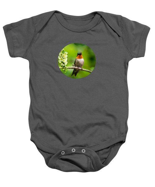 Male Ruby-throated Hummingbird With Showy Gorget Baby Onesie by Christina Rollo