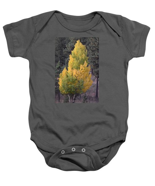 Aspen Tree Fall Colors Co Baby Onesie