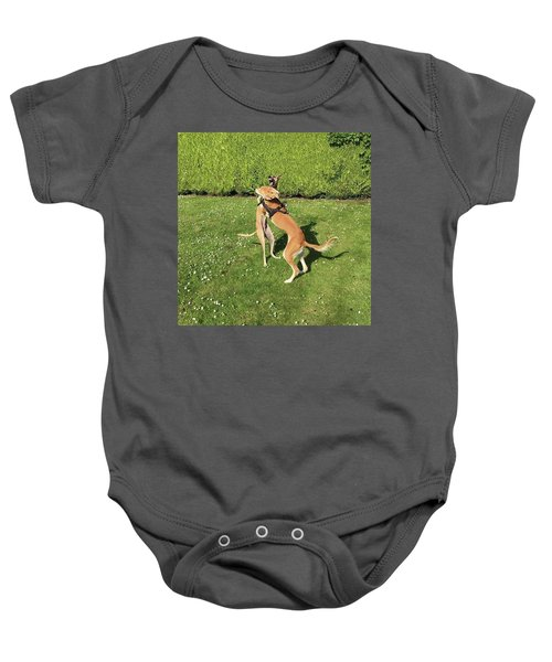 Ava The Saluki And Finly The Lurcher Baby Onesie