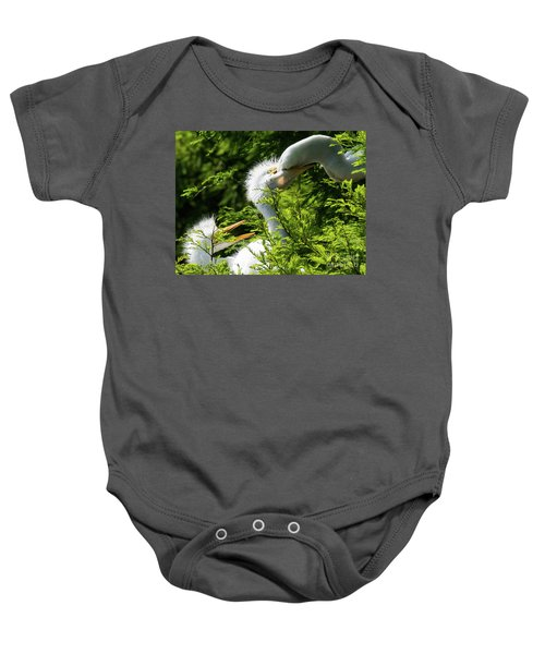Baby Egrets Being Feed Baby Onesie