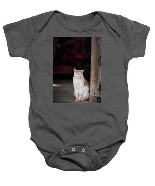 Barn Cat And Tractor Baby Onesie