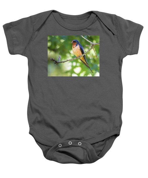Barn Swallow  Baby Onesie by Ricky L Jones