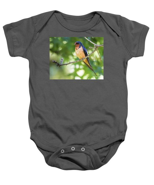 Barn Swallow  Baby Onesie