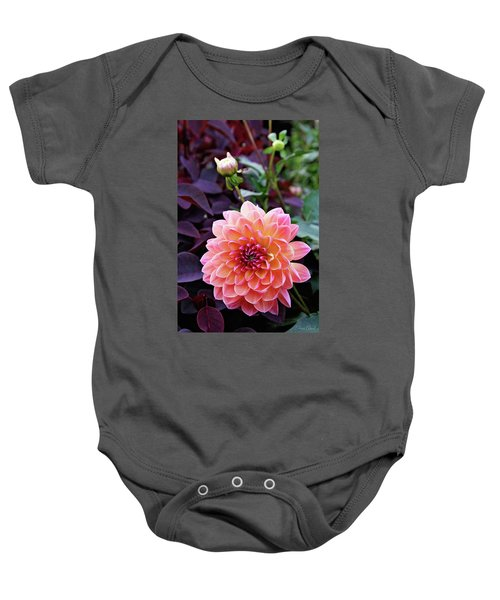 Beautiful Dahlia Baby Onesie