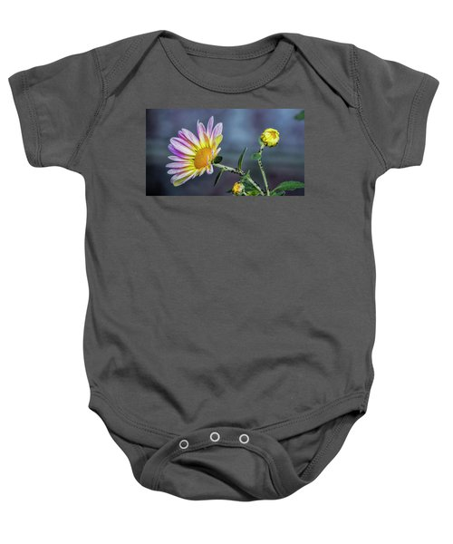 Beauty And The Beasts Baby Onesie
