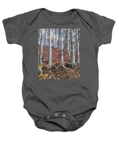Beech Trees Baby Onesie