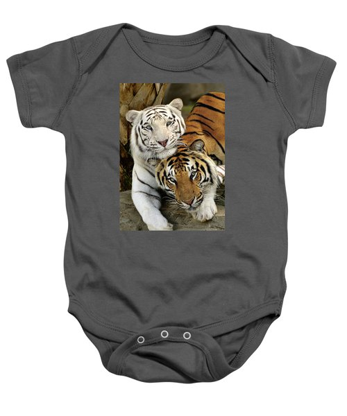 Bengal Tigers At Play Baby Onesie
