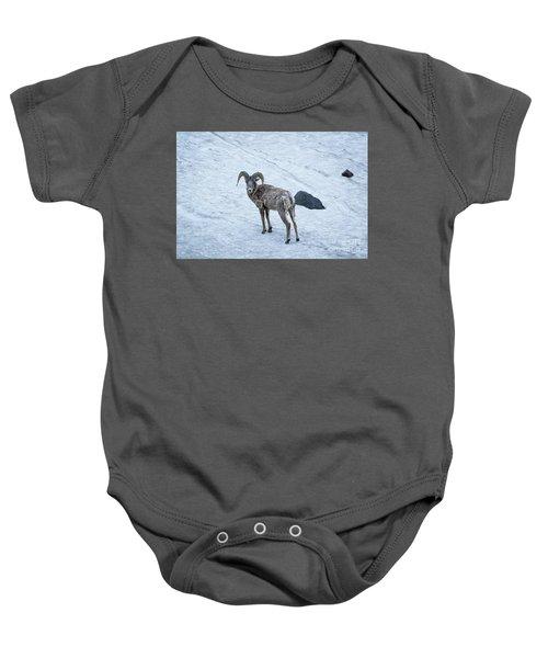 Big Horn Sheep  Baby Onesie
